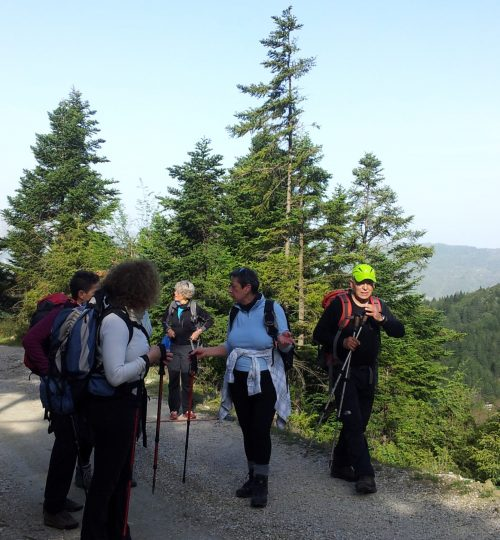 Hiking group